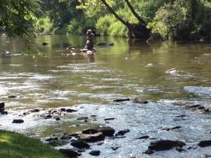 BOI river-cairn